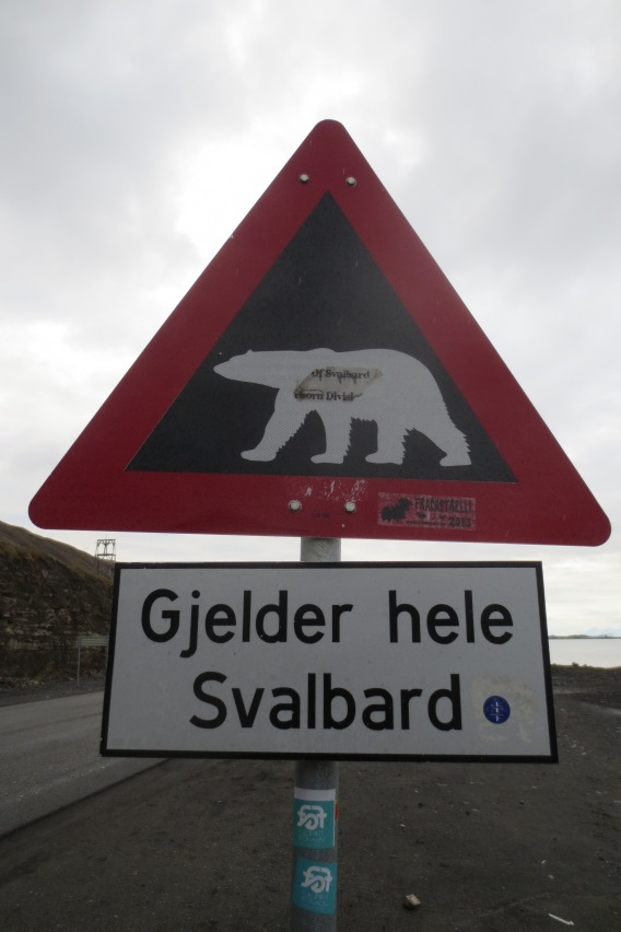 0822Longyearbyen (25)