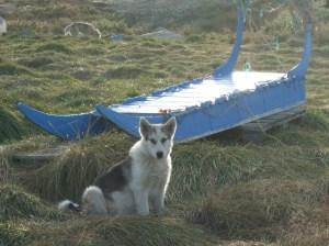 Nordland2009 (116)
