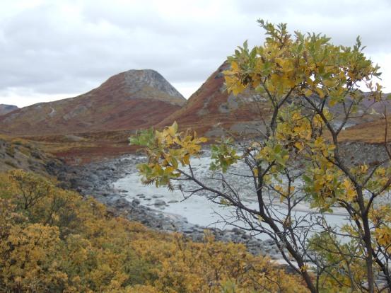 Nordland2009 (136)
