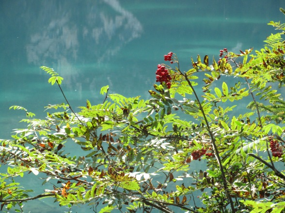 Pragser Wildsee (2)