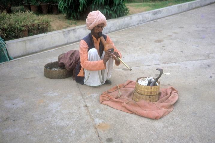 Indien (1)
