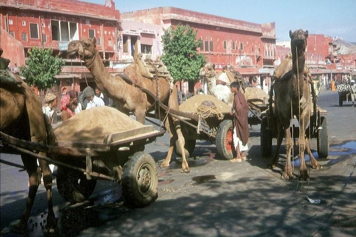 Indien (7)