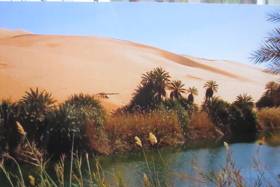 Mandara See mitten in der Wüste © Wolfgang Stoephasius