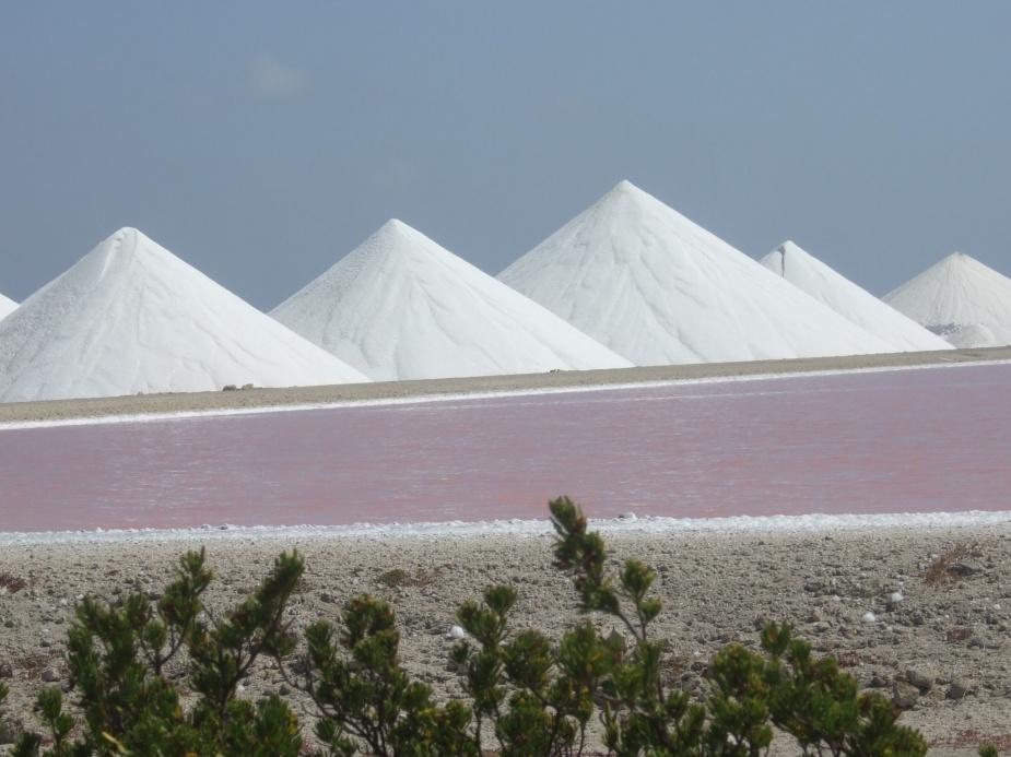 Bonaire: Salzgewinnung © Wolfgang Stoephasius