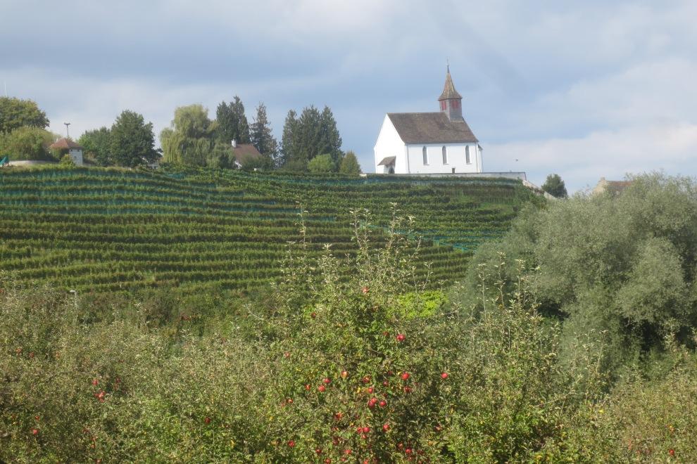 Die Ortschaft Rheinau © Wolfgang Stoephasius