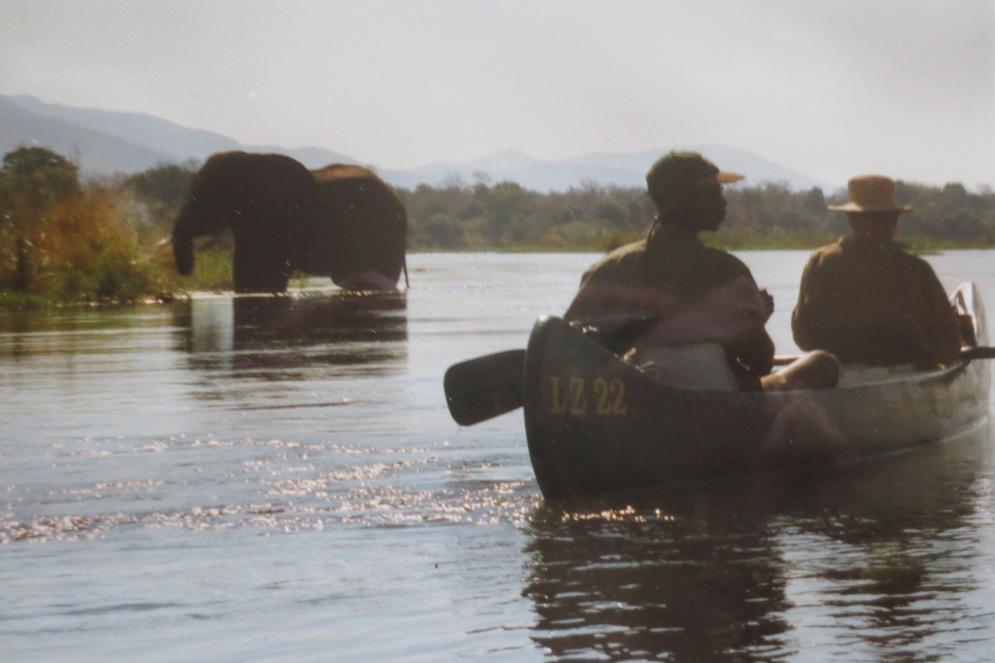 Kanu und Elefant © Wolfgang Stoephasius