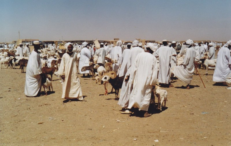 Souq Libya © Wolfgang Stoephasius