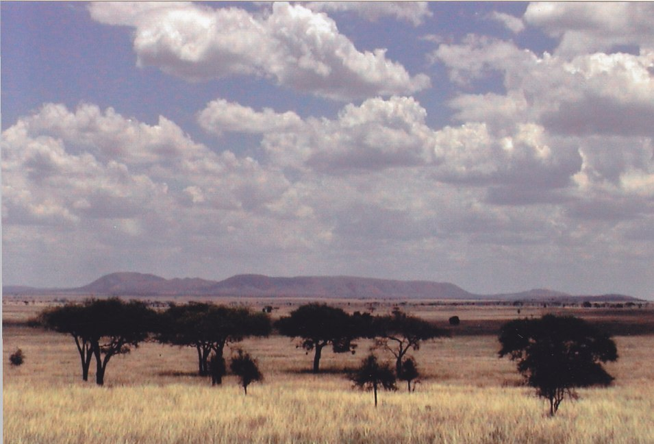 Die Serengeti © Wolfgang Stoephasius