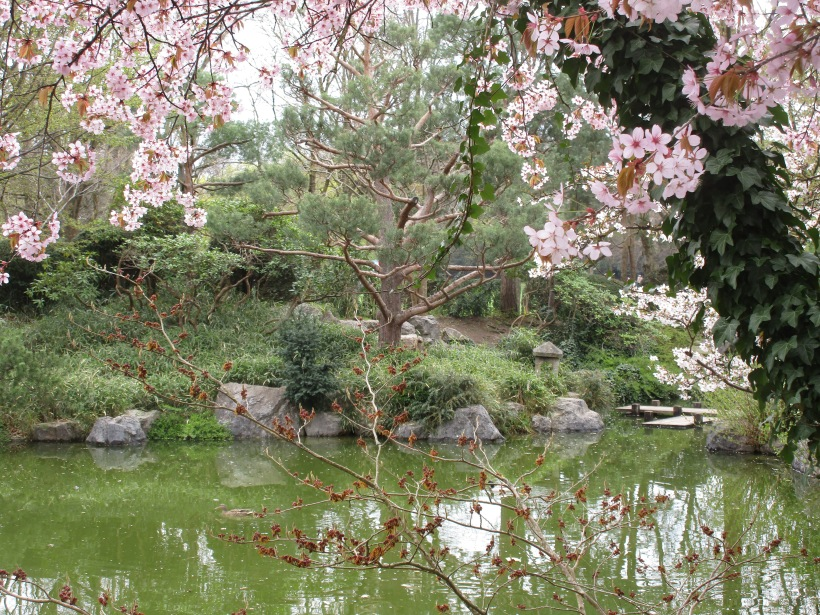 Japanischer Garten in München © Wolfgang Stoephasius